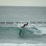 _DSC1960.thumb.jpg
