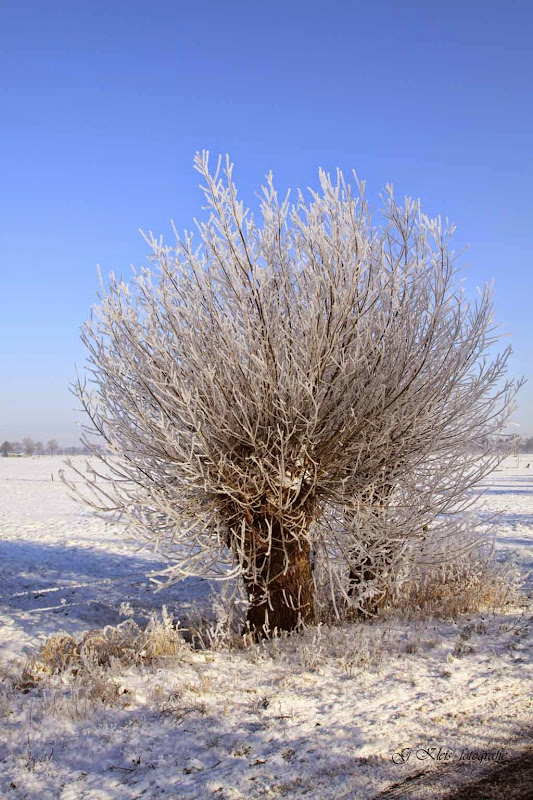 Winter - Winter-048.jpg