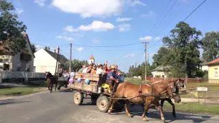 Szüreti felvonulás Jákó 2015 - Jákó Szabadság utca video