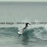 _DSC2366.thumb.jpg