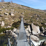 Suspension Bridge over the Snowy River (88777)