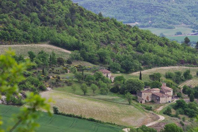 Le vallon des Fouix vu depuis les Hautes-Courennes. Saint-Martin-de-Castillon (Vaucluse), 7 mai 2014. Photo : J.-M. Gayman