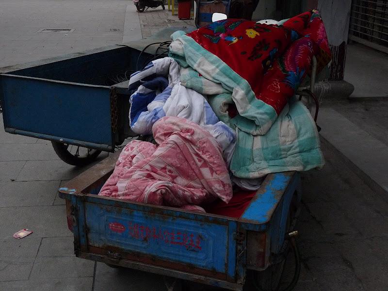 Chine.Shanghai et Suzhou - P1060053.JPG