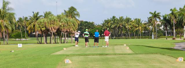 2015 Golf Tournament - 2015%2BLAAIA%2BConvention-1486.jpg