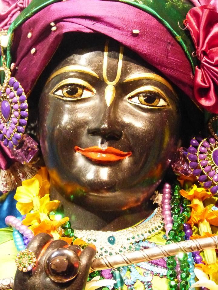 ISKCON New Govardhan Deity Darshan 01 Mar 2016 (19)