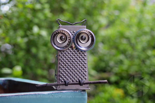 Cheese Grater Owl