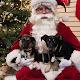 Santa Photos 2014