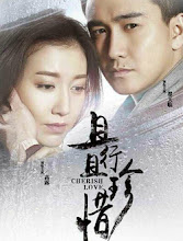 Drama: Cherish Love - ChineseDrama info