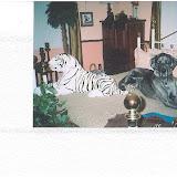 Dynamite Danes Family Album #2 - Winston_Earl_ready_for_bed.JPG