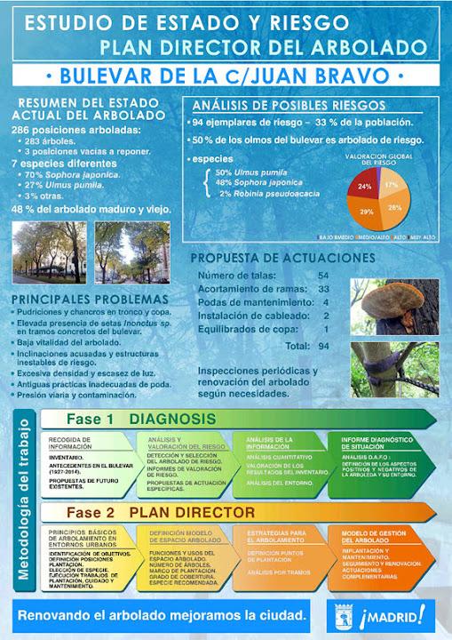 Talas, podas y 60 nuevos árboles para la calle Juan Bravo