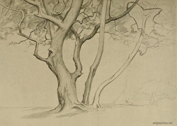 Bila gambar bersuara: Lakaran dan lukisan pokok (media pensil)