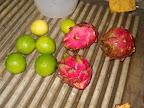 Classes in Nicaraguan Cooking