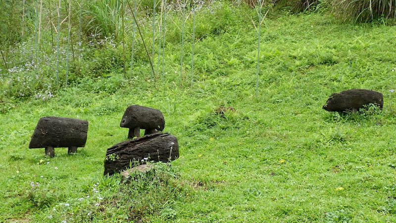 TAIWAN A cote de Luoding, Yilan county - P1130521.JPG