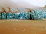 Endicot Arm - Dawes Glacier -  8-17-2009 5-01-01 PM.JPG