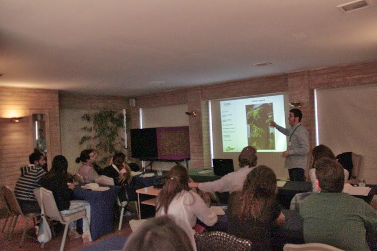 Sesión teórica, curso de jardines verticales