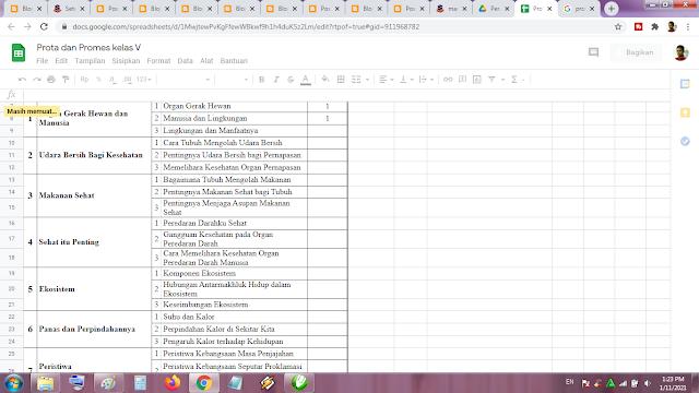 Prota dan Promes Kelas 5 Kurikulum 2013 Revisi Terbaru