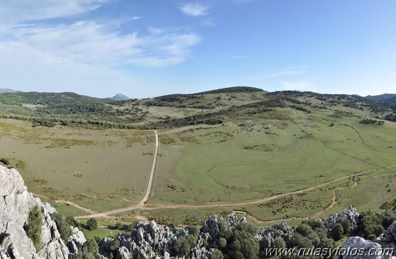 Subida a los Cerros Patagalana y Lajares