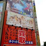maid cafe promotions in Akiba in Akihabara, Tokyo, Japan