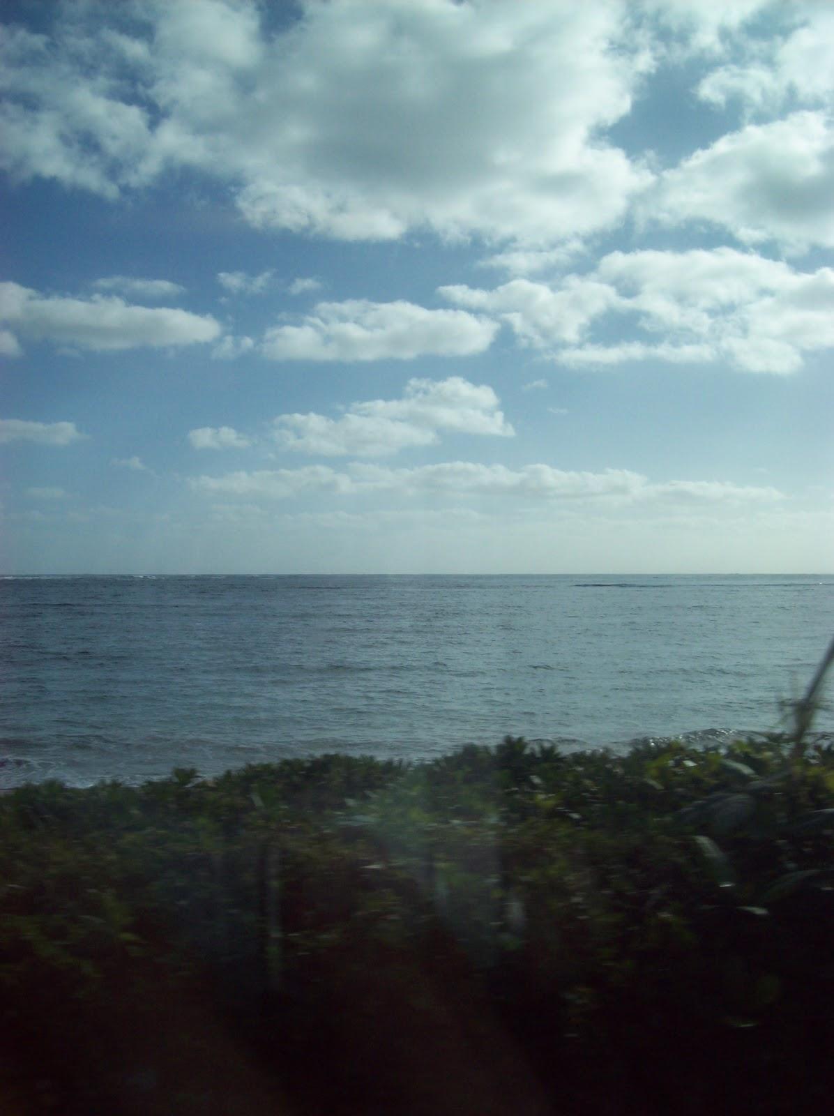 Hawaii Day 3 - 100_6911.JPG