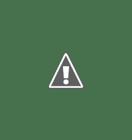 Обзор эхолотов для рыбалки. Отзыв об эхолоте Humminbird Fishfinder 561x