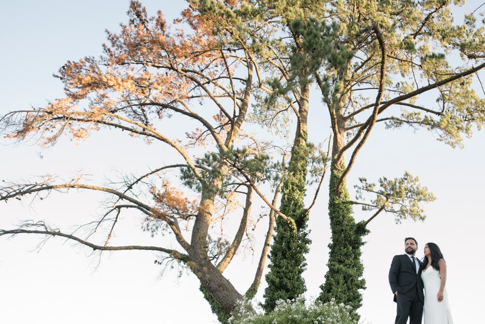 Grace and Alfonso wedding Clouds Estate Stellenbosch South Africa shot by dna photographers 778.jpg