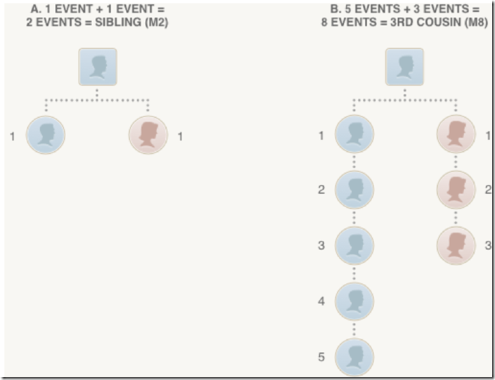 Ancestry DNA meiosis event relationship example