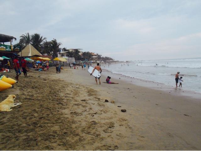 Mancora. Peru, Turtles, Travel, Travel Blogger, travelsandmore