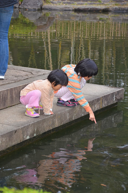 Япония: невозможное  возможно! Октябрь-ноябрь 2013