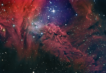 Nebulosa Pele de Raposa