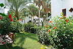 Фото 9 Antik Garden Hotel