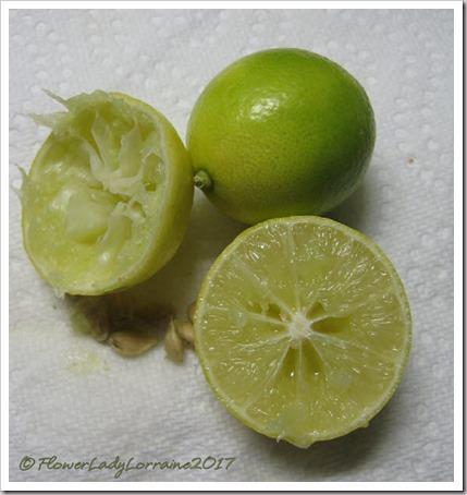 10-12-key-limes