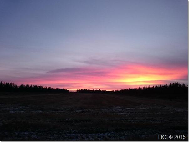 solnedgang 150116