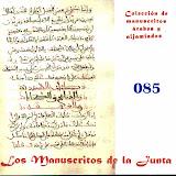 085 - Carpeta de manuscritos sueltos.