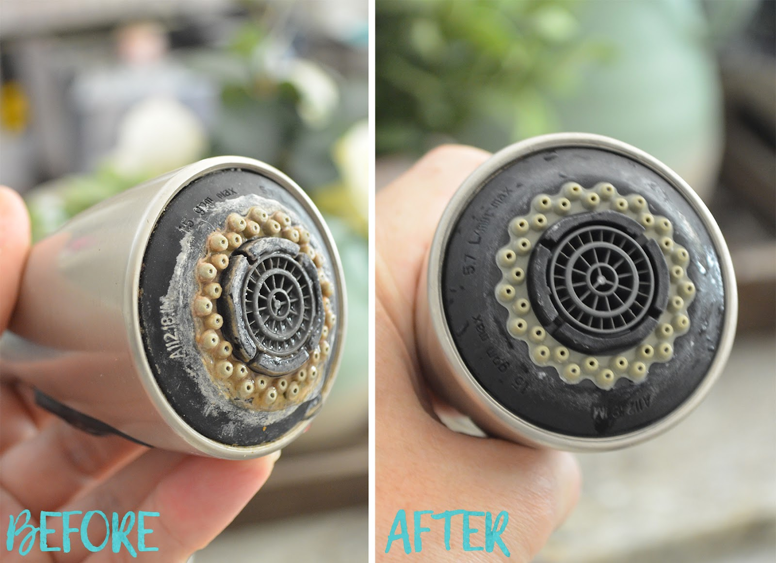How to Quickly Clean For Holiday Guests With the SteamMachine ...