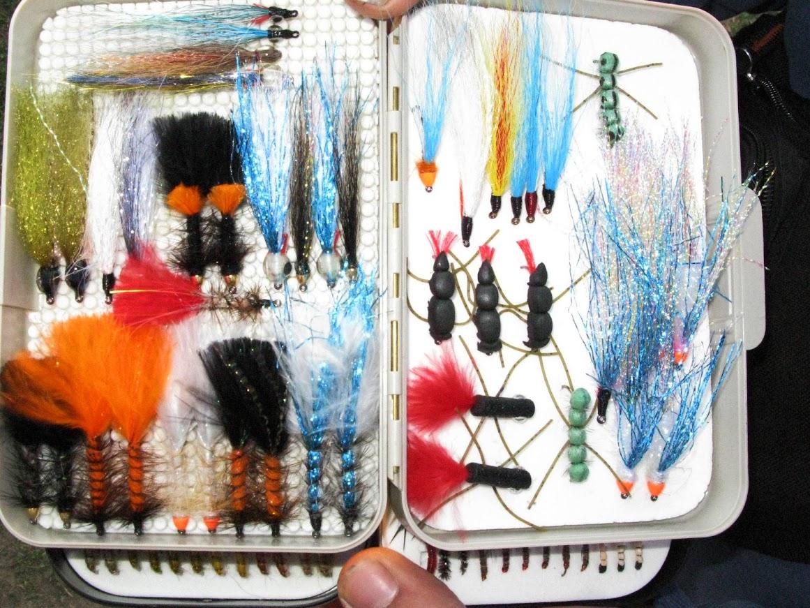 Кутиите с мухи на Ангел Илиев - Ачо - София