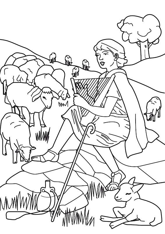 David cuidando ovejas para colorear