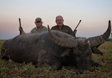 Berthold Walter, Germany, with a nice old buffalo taken on the plains just on dark.