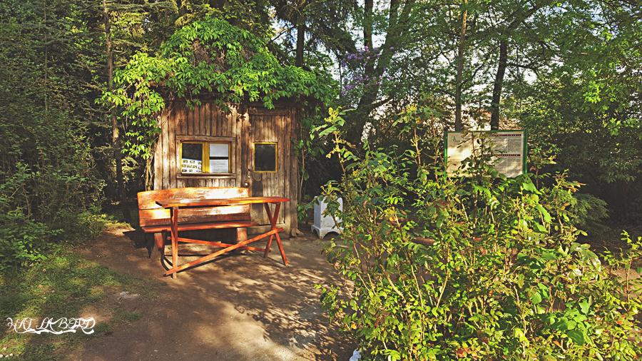 casa parc simeria primavara 2016