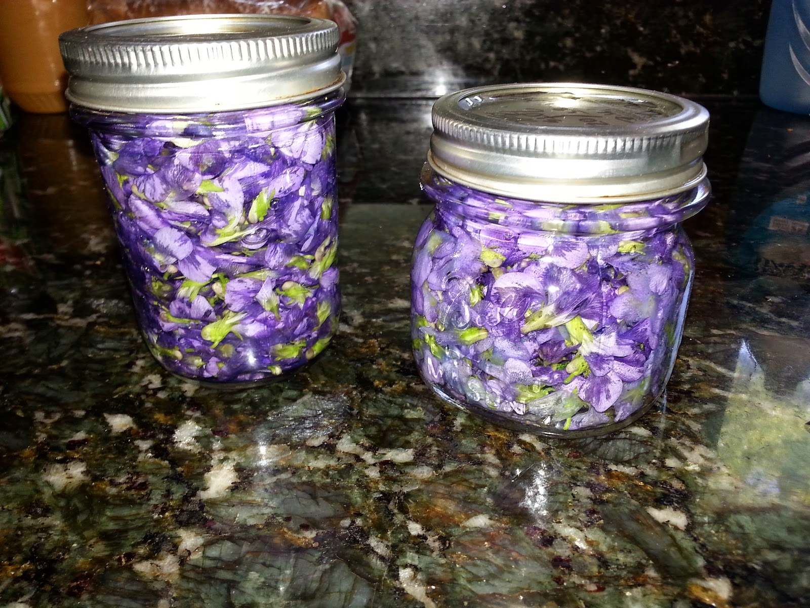 My eldest and I made some wild Violet tincture from the flowers in the back yard…