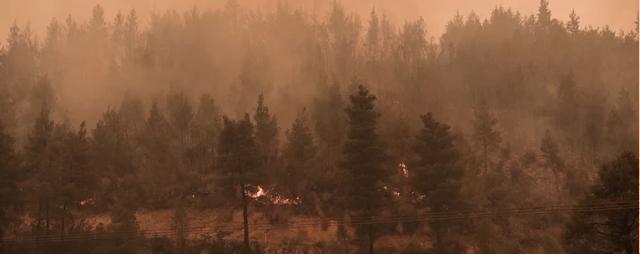 Φωτιά στην Εύβοια: Η πυρκαγιά απειλεί τα χωριά Γαλατσώνα, Αβγαριά και Ασμίνι – Μάχη στο μέτωπο προς Ιστιαία [Βίντεο]