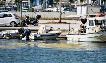"""""""Πράσινη παλίρροια"""" από φύκια έπνιξε το λιμάνι της Πρέβεζας"""