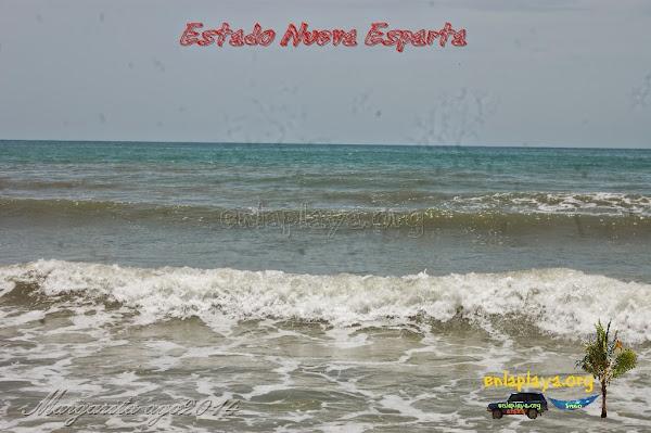 Playa Laguna de la Restinga NE078, Estado Nueva Esparta, Municipio Tubores