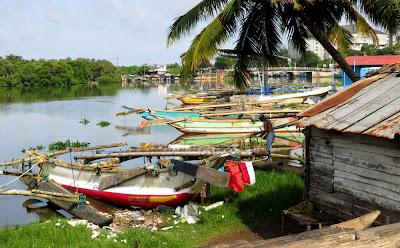 Negombo lagoon 04