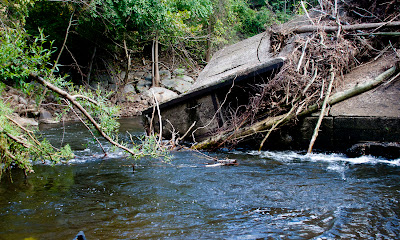 Old dam between suffern and Tuxedo. In October the sycamore strainer was gone but the dam is still trickier then previously as the current is getting funneled against it quite hard by new gravel bars.