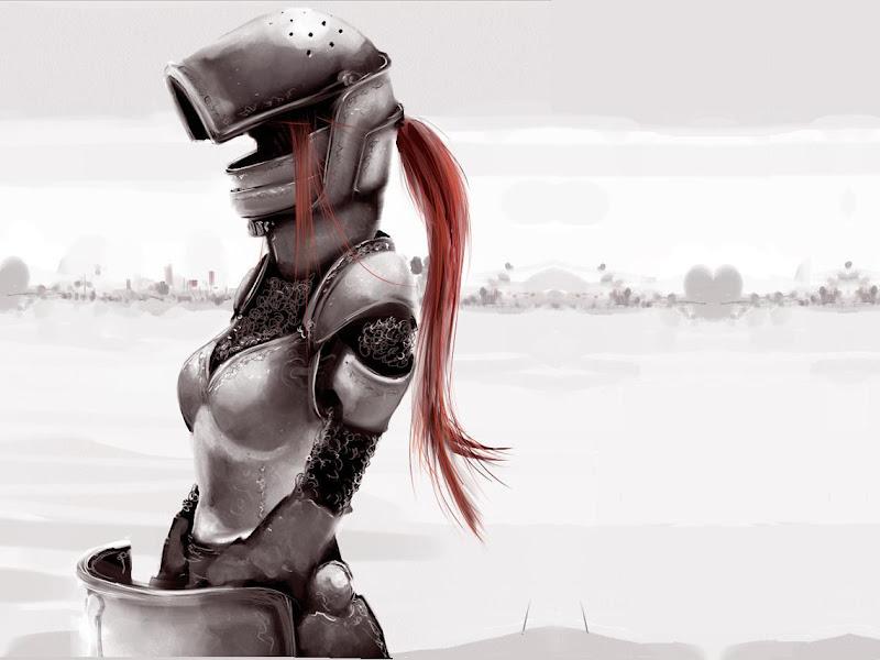 Dangerous Knight Of Wizdom, Warriors 3