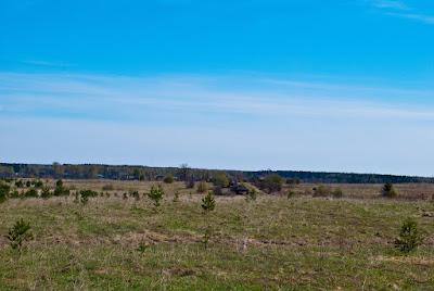 Вид на деревню Морозовы с холма