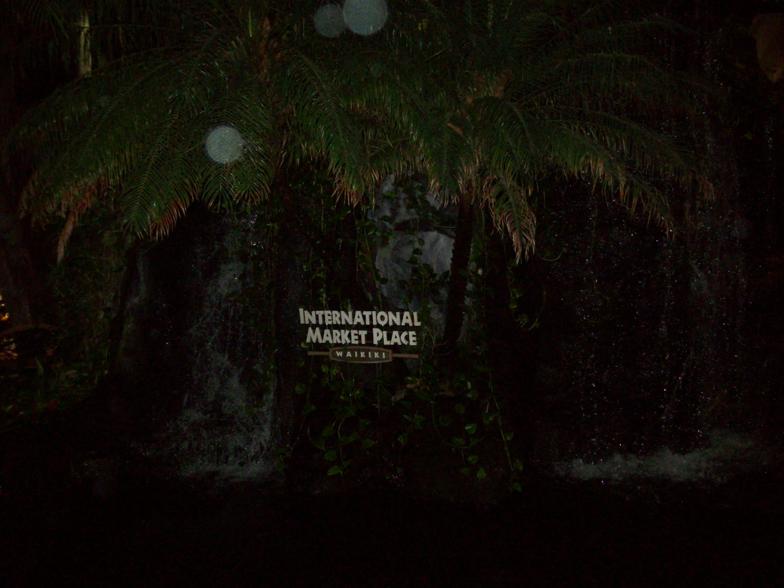 Hawaii Day 1 - 114_0861.JPG
