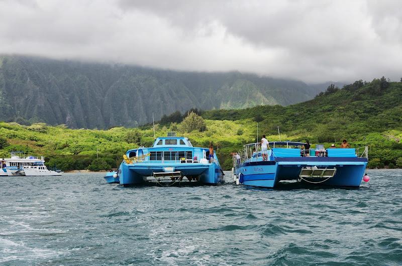 06-18-13 Waikiki, Coconut Island, Kaneohe Bay - IMGP7017.JPG