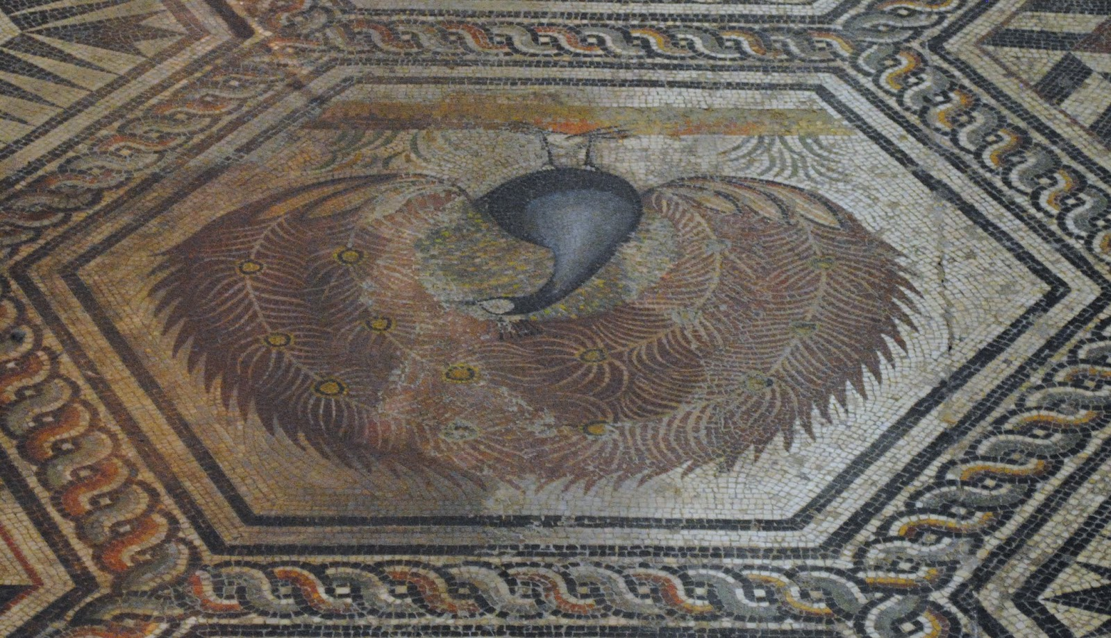 My Photos: Mosaics -- France -- Vaison-la-Romaine -- Museum