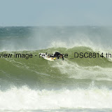 _DSC8814.thumb.jpg